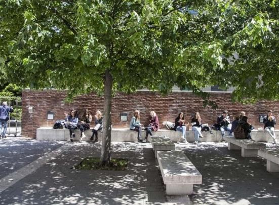 BOCCONI STUDENTS.jpg